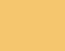 Logo_RiseNyes-Gold-website_002